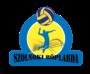 Jóváhagyták a TAO-t Szolnokon is a 2019/2020-as szezonra!